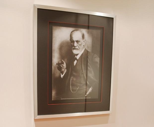 """A Psicanálise terá tido o seu início em 1900 com a publicação da obra """"A Interpretação dos Sonhos"""" por Sigmund Freud. O fundador da Psicanálise definiu-a como uma teoria geral do funcionamento mental, um método de investigação e como uma técnica psicoterapêutica.  De grosso modo, são consideradas pedras essenciais da sua prática, a interpretação de sonhos e da transferência (conjunto de sentimentos, afetos e emoções que o paciente transfere para o analista e que outrora eram dirigidos aos seus cuidadores da infância), bem como a neutralidade técnica, a qual não deve ser confundida com neutralidade emocional ou ausência de empatia.  A Psicanálise Contemporânea é, fundamentalmente, uma Psicanálise Relacional que se baseia, em grande medida, no estabelecimento de uma aliança terapêutica muito forte, empática e intersubjetiva. Por isso, para a Psicanálise, não existem dois pacientes iguais, mesmo que o diagnóstico psicopatológico e psiquiátricos sejam os mesmos. Bem pelo contrário, a Psicanálise trata os sintomas e consequente sofrimento mental de forma indireta, ou seja, através duma tentativa de reorganização das estruturas de Personalidade onde residem os pilares ou alicerces dos referidos sintomas.  Embora seja dirigida ao passado do paciente (infância e adolescência), o objetivo é catapultar o paciente para um futuro com maior liberdade, autonomia e autodeterminação. Procura-se, dessa forma, tentar encontrar o verdadeiro """"Eu"""" do doente e que está encoberto pela doença. Para tal, o Amor à verdade é premissa indispensável.   Atualmente, poucos são os casos que se apresentam com contraindicação para uma Psicanálise de divã. A pluralidade de teorias, a diversidade de metodologias e a flexibilidade no número de sessões (poderão nalguns casos serem inferiores a três vezes por semana), tornam este tratamento como capaz de se moldar ao paciente em questão. No entanto, antes da proposta para um tratamento psicanalítico, deve o paciente ser submetido a várias entrevistas, de"""