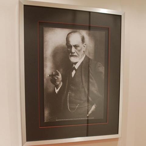 O Contributo de Freud para a Psicopatologia